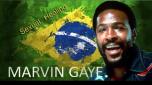 Marvin Gaye - Studio Rio